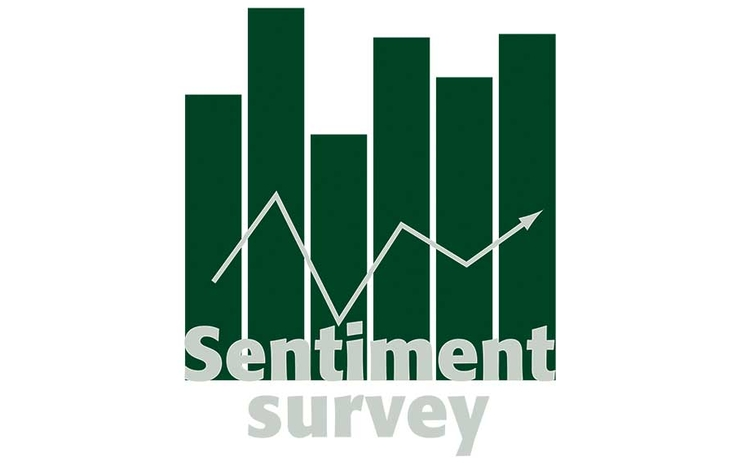Sentiment Survey
