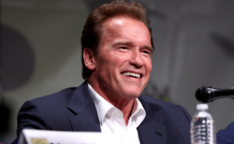 FCA Calls On Arnie To Bulk Up Insurance Misselling Campaign