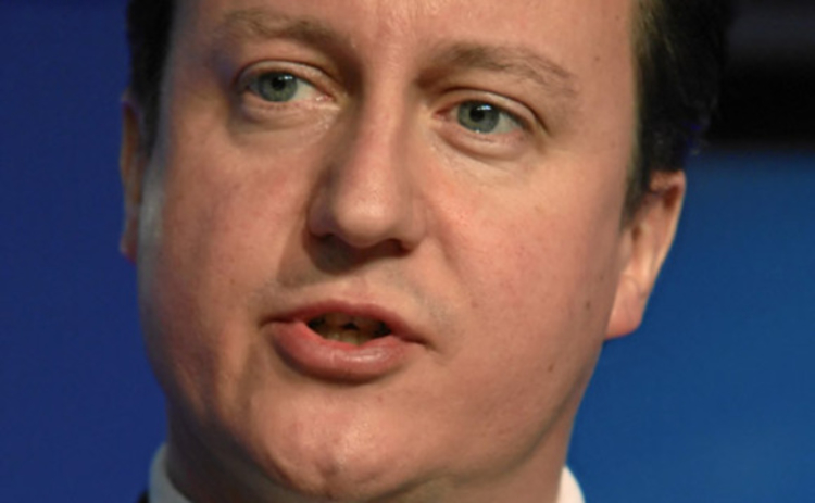 David Cameron at the World Economic Forum annual meeting in Davos 2010