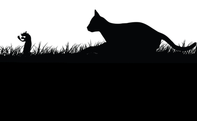 cat-and-mouse-silhouette